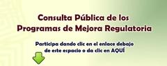 Consulta Pública de los  Programas de Mejora Regulatoria