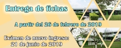 Fichas 2019
