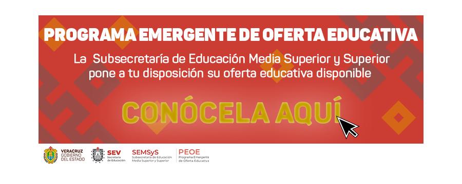Programa Emergente de Oferta Educativa 2019 - 2020